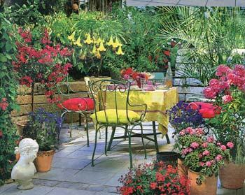 Зимний сад оранжерея терраса